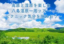 高原と湿原を楽しむ八島湿原一周ツアー ピクニック気分を味わおう